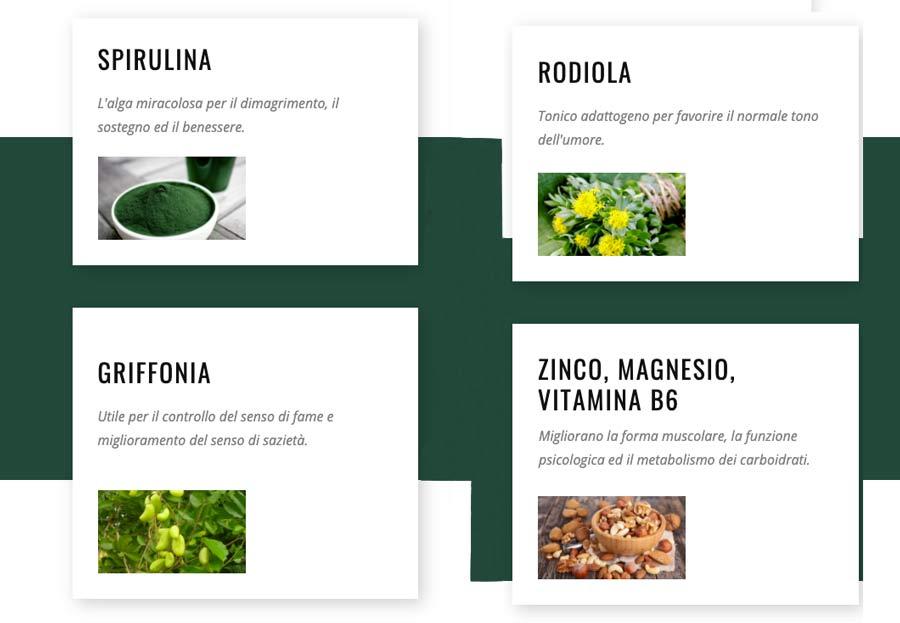 Ingredienti di Spirulina Control